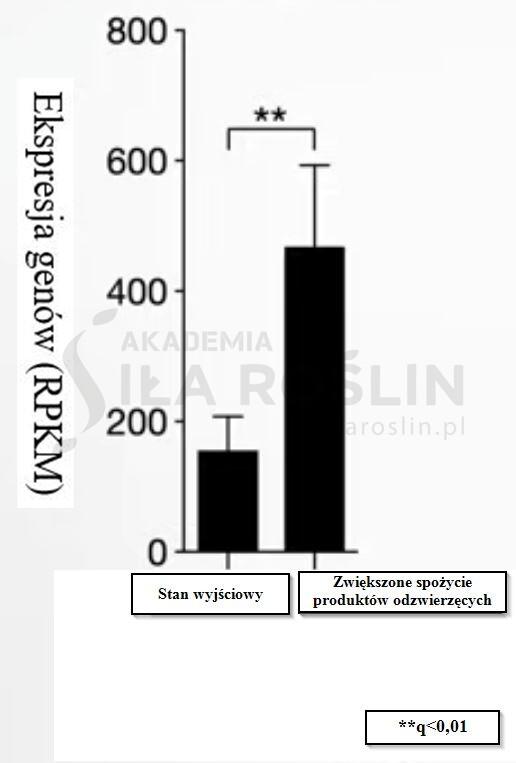 wykres 3 IBD