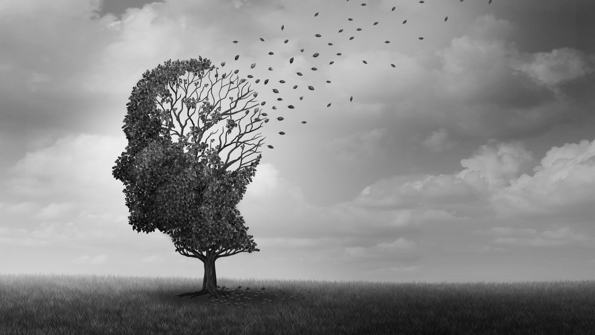 Rośliny w profilaktyce choroby Alzheimera
