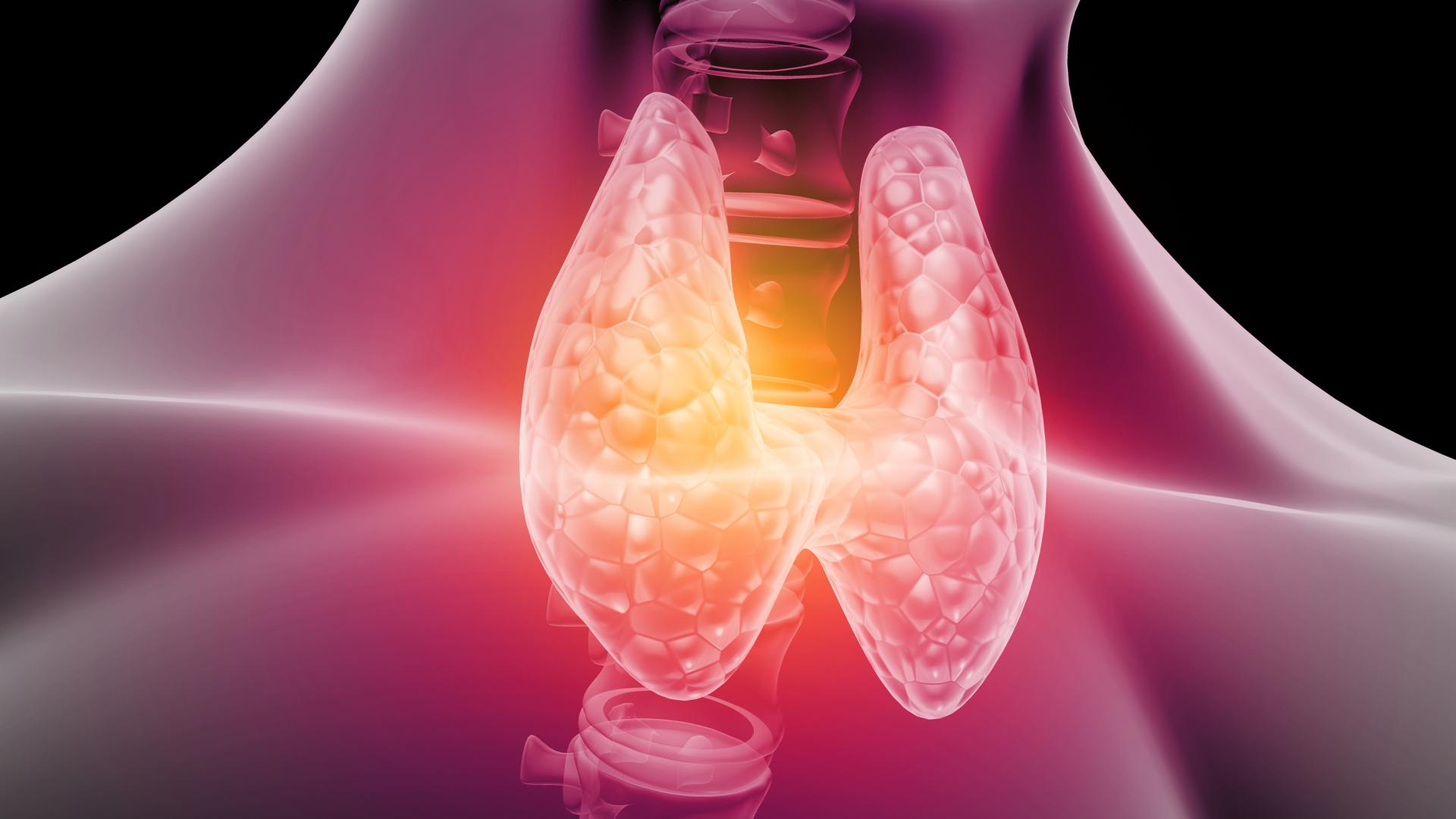 Najlepsza dieta w leczeniu niedoczynności i nadczynności tarczycy