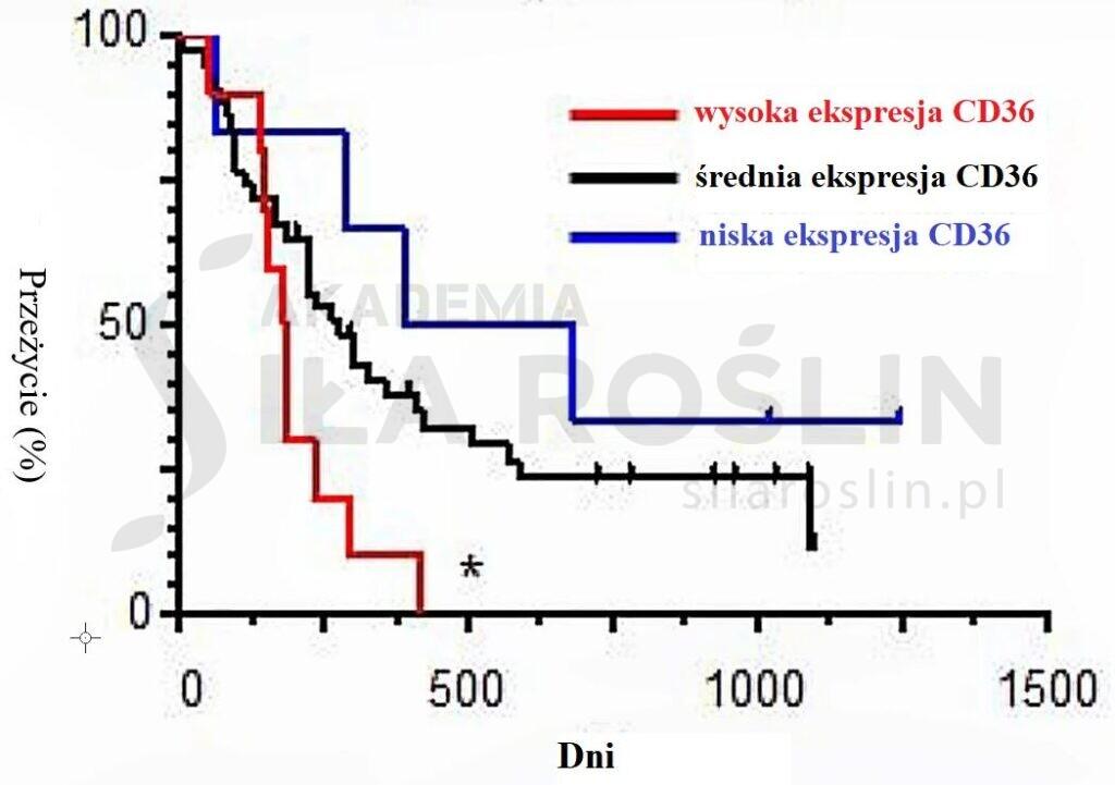 wykres 1_ przerzuty
